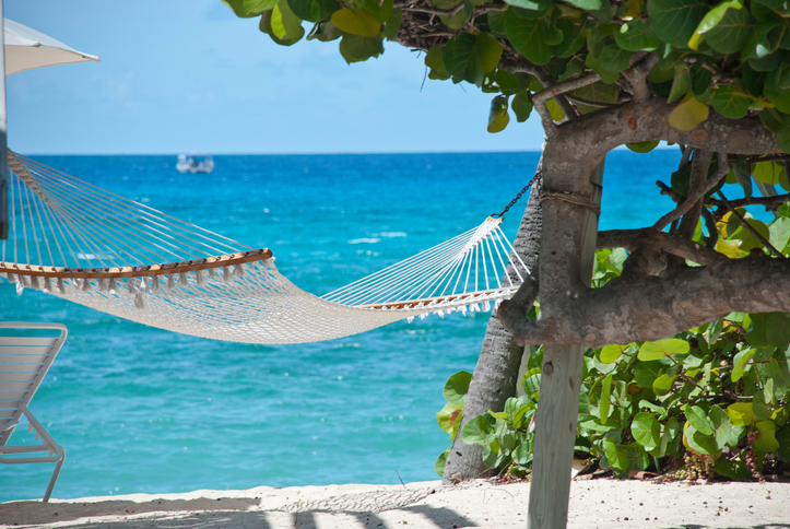 Top Grand Cayman Attractions Jacques Scott Online